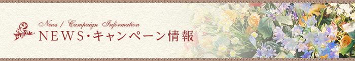 NEWS・キャンペーン情報